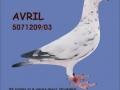 avril2008blauw1