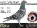 nl11-1782226_queen_netherlands_young_lin