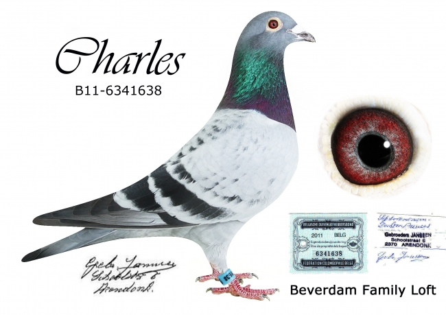 Charles-B11-6341638